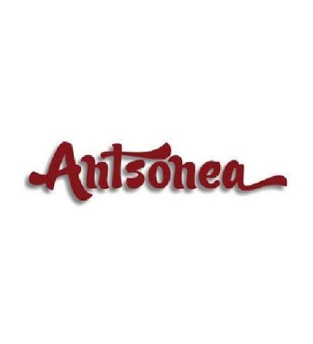 ANTSONEA