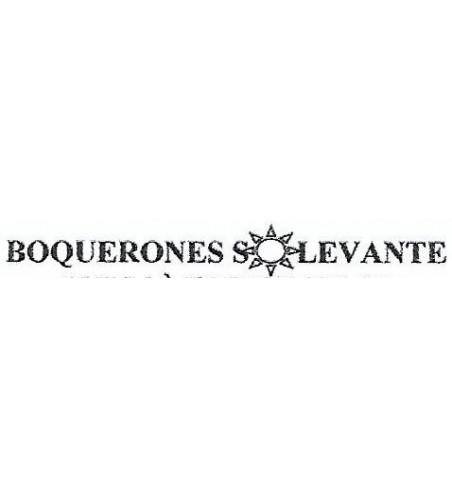 BOQUERONES SOLEVANTE